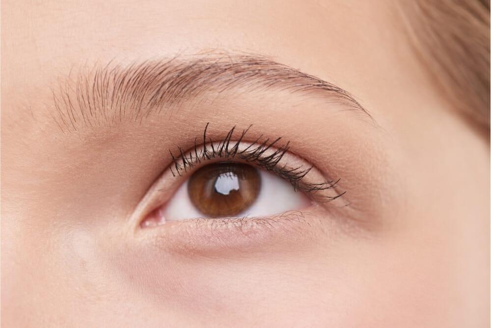 Do eyelashes grow back?